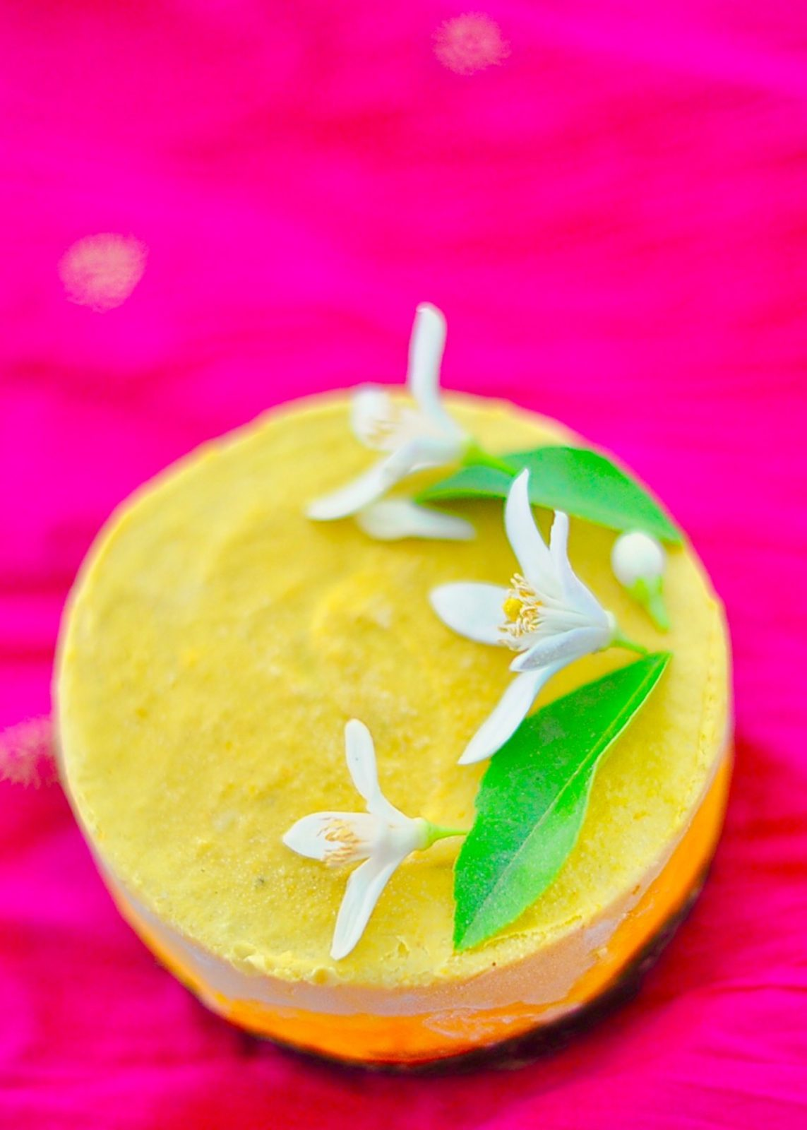 Mini Raw Mango Cheesecake (Vegan, GF)